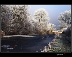 Frozen. (Picture post.) Tags: trees winter green nature water landscape countryside canal interesting eau frost hoarfrost paysage arbre soe blackice platinumheartaward