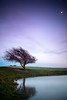 (drfugo) Tags: england sky moon reflection tree water grass night clouds sussex countryside pond sheep wind dusk country bank east dew fields eastsussex southdowns windblown dewpond ditchling canon5dmkii canon24105mmf40isusm