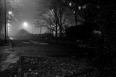 alone (Luca Enrico Sironi) Tags: street blackandwhite milan fog milano streetphotography nebbia bianconero