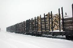 Load of pulpwood at Englehart, Ontario. (Norm@rapids) Tags: ontario station railway load englehart temiskaming pulpwood
