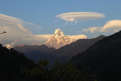 Mt. Machapuchhare or Fish Tail Mt.- Nepal (dpcsail) Tags: nepal fish tail machapuchhare mtmachapuchhare
