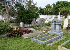 Key West (Florida) November 2012 2287b 5x7 (edgarandron - Busy!) Tags: cemeteries cemetery keys florida keywest floridakeys keywestcemetery