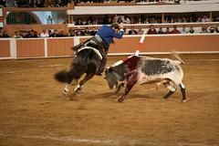 Provincia Juriquilla_2011 - 17 (Eduardo de la Garma de la Rosa) Tags: canon toros corrida lida bestia 2011 rejoneador pablohermosodemendoza eduardodelagarma mamonet