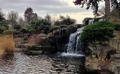Waterfall (andyp uk) Tags: uk winter england kewgardens lake london water kew garden waterfall december rockgarden royalbotanicgardens 2012 uploaded:by=flickrmobile flickriosapp:filter=nofilter