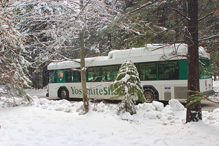 The Yosemite Shuttle in Winter