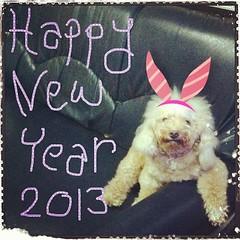 HNY 2013 ^_^ ขออำนาจคุณพระศรีรัตนตรัย และสิ่งศักดิสิทธิ์ทั่วทั้งสากลโลกจงดลบันดาลให้พี่ๆเพื่อนๆมีแต่ความสุข ความเจริญ สุขกาย สบายใจ ตลอดปีใหม่นี้และปีต่อๆไปนะคะ....BowieZ