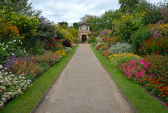 Nymans, West Sussex, UK, , ,  (Akiko Morita) Tags: uk travel light holiday inspiration plant west flower colour english history love nature architecture garden landscape photography sussex photo europe tour image gardening nt vibrant joy picture historic romantic british  inspirational  horticulture       sensation                      nymans