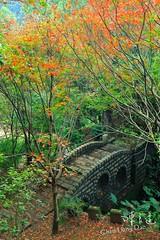 DAO-48580 ,,,,, (Chen Liang Dao  hyperphoto) Tags: