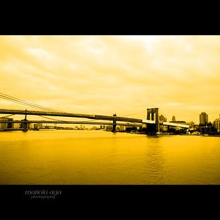 The Brooklyn Bridge ~ NYC ... Explored