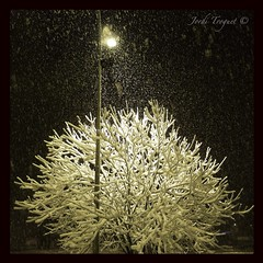 Iluminacin ! (Jordi Troguet) Tags: leica light snow nature night nieve natura 1001nights andorra arinsal vallnord jtr dlux5 goldstaraward troguet jorditroguet spiritofphotography artofimages 1001nightsmagiccity mygearandme mygearandmepremium leicadlux5 creativephotocafe uploaded:by=flickrmobile flickriosapp:filter=nofilter