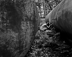 To hold it against your bones (sadandbeautiful (Sarah)) Tags: portrait bw woman selfportrait abandoned me female self outside pennsylvania pipes resort shrubs moliver