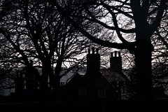 Trees and Buildings Silhouettes in Lincoln - Lincolnshire, UK (ChrisGoldNY) Tags: uk greatbritain travel trees england english architecture buildings europa europe european forsale unitedkingdom britain branches silhouettes eu lincolnshire viajes posters lincoln albumcover british bookcover chimneys bookcovers albumcovers gridskipper northeastengland jaunted chrisgoldny chrisgoldberg chrisgold chrisgoldphoto chrisgoldphotos