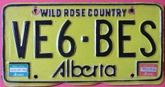 ALBERTA 1983 ---AMATEUR RADIO PLATE SIX DIGIT CALL SIGN (woody1778a) Tags: world auto canada cars car sign vintage edmonton photos tag woody plate tags licenseplate collection number photographs alberta license plates 1983 foreign numberplate licenseplates numberplates licenses cartag carplate carplates autotags cartags autotag foreigns amatuerradio pl8s worldplates worldplate foreignplates platetag