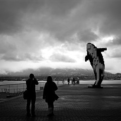 Digital Orca by Douglas Coupland at Vancouver Convention Centre (どこでもいっしょ) Tags: blackandwhite bw canada monochrome vancouver 35mm bc northvancouver fullframe hdr douglascoupland downtownvancouver vancouverconventioncentre rx1 digitalorca sonyrx1 sonydscrx1 sonycybershotrx1