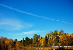 Sky Line (Jeanne W Pics) Tags: road autumn trees sky tree fall nature leaves sunshine minnesota skyline clouds drive leaf woods midwest northshore duluth lakesuperior
