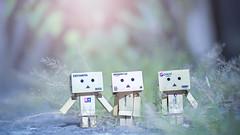 (Lemuel Montejo) Tags: danbo pepsi tamiya amazon toys boxes actionfigure