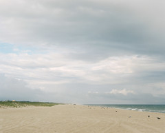 Sandscape (kenneth.pelczar) Tags: soul living photography fun america usa newyork longisland green summer color negative 160asa 105mm 2016 camera film colors grain ishootfilm iso160 kodakportra 160 kodak portra fujifilm analogue 6x7 pentax asahi