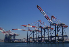 More Huge Cargo Cranes in Long Beach Harbor (Robb Wilson) Tags: longbeachharbor tourboats cargocranes longbeach cargo shipping freephotos