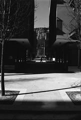 Le Albere (Piero Cioffi) Tags: ilforp hp5 400 street trento nikon fm2 trentino albere renzo piano passing lines shadows