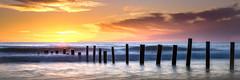 Moana Sands (Daryl Kelly) Tags: sunset moanabeach southaustralia shoreline hdr nikond800e nikkor2470mmf28 darylkelly
