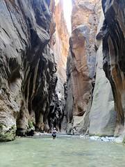 The Narrows (DMLewis1960) Tags: utah zion park canyon hike narrows wade river