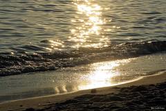 Golden sea (nathaliedunaigre) Tags: sea mer mditerrane coucherdesoleil sunset plage beach sable reflets reflections gold or golden dor water brillant brillance