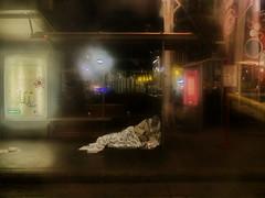 """Beautiful World???? Schne Welt????  und: """"Kann man auch nur den Gedanken wagen, glcklich zu sein, wenn alles in Elend darnieder liegt?"""" Heinrich von Kleist Brief an Marie von Kleist (hedbavny) Tags: shelterless homeless unsheltered houseless haltestelle station nacht night obdachlos wohnungslos unterstandslos sandler schlaf sleep bed bett glck glcklich schn inhalt form realittsflucht realittsverweigerung strassenbahnhaltestelle fenster window mann male beard bart licht light regen rain wet nas herbst autumn sptsommer zitat brief mailart spiegel mirror reflection spiegelung red rot blau blue gold yellow gelb green grn hedbavny ingridhedbavny wien vienna austria sterreich schatten shadow black schwarz"""
