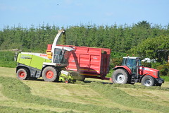 Claas Jaguar 870 SPFH filling a Broughan Engineergin Mega HiSpeed Trailer drawn by a Massey Ferguson 6495 Tractor (Shane Casey CK25) Tags: claas jaguar 870 spfh filling broughan engineergin mega hispeed trailer drawn massey ferguson 6495 tractor agco red self propelled forage harvester watergrasshill wgh silage silage16 silage2016 grass grass16 grass2016 winter feed fodder county cork ireland irish farm farmer farming agri agriculture contractor field ground soil earth cows cattle work working horse power horsepower hp pull pulling cut cutting crop lifting machine machinery nikon d7100 traktori tracteur traktor trekker trator cignik mf