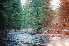 (scott w. h. young) Tags: sun mountains film water forest 35mm woods montana bozeman streams hyalitecanyon