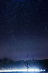 Starry Sky (_flowtation) Tags: auto street schnee light sky snow car silhouette night fores