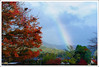 20121127_6936_京都之秋 (Redhat/小紅帽) Tags: autumn fall japan maple rainbow kyoto redhat 京都 日本 紅葉 嵐山 秋 楓葉 あき 秋天 楓紅 もみじ 彩虹 小紅帽 桂川 秋雨 あらしやま