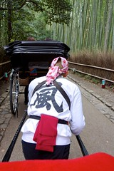 Through the Bamboo Grove (Jake Jung) Tags: japan kyoto sony streetphotography arashiyama  getty editorial  rickshaw gettyimages flickrvision  apsc e18200mmf3563oss nex7 sel18200le gettyimagesjapan12q4 gettyimagesjapan13q1 jakejung