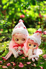 merry christmas our merry flickr friends! :) (launshae) Tags: christmas pink paloma blythe merry francoise bhc ananassa middie launshae