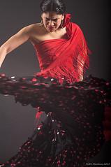 Sesión Flamenca 03 (paco.ghun) Tags: red copyright music beautiful female mujer rojo model dress singing dancing pentax dancer modelo musica bella shawl brunette gypsy guapa baile flamenco vestido morena k20 manton moles gitana cante lunares bailadora typicalspanish brunettewoman k20d pacomartinez tipicoespañol mujermorena mygearandme spanishtypical pacoghun sesiónflamenca sittingflamenco