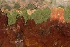 Sentier des ocres de Roussillon (Michel Seguret Thanks for 11,8 M views !!!) Tags: france nikon pro d200 provence vaucluse smörgåsbord dragongoldaward michelseguret