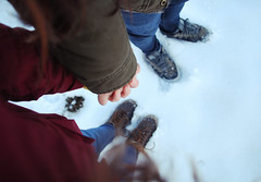 Loving winter. (Leavethelies) Tags: winter boy woman snow man guy love nature girl headless holding hands shoes couple december romance together leavethelies laststandforhope