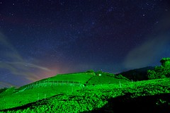 Starry night in tea field @ (Vincent_Ting) Tags: sunset sky clouds taiwan  formosa  jiayi   seaofclouds alisan    teafield