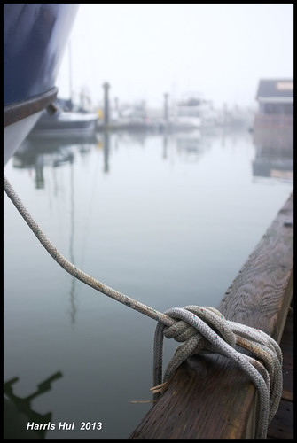 Looking Forward To The New Fuji X100s! - Steveston JX4883e