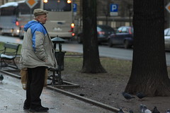 dokarmianie gobi 4/365 (Arek Olek) Tags: street man public square pigeons krakw cracow peeing plac project365 krakoff matejki