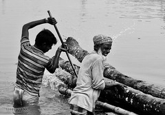 Working for abandoned soul | 2 (Shams Sourav) Tags: people white black tree work river village award gallary