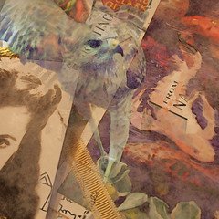 Meditations of an Old Woman (hollykl) Tags: collage photomanipulation square hawk digitalart hypothetical vividimagination arteffects shockofthenew sharingart awardtree vanagram crazygeniuses squarefotografiasparaenmarcar1006