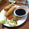 Homemade Spring Rolls @ Powis Castle And Garden