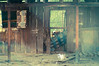 "Abandoned Shed <a style=""margin-left:10px; font-size:0.8em;"" href=""http://www.flickr.com/photos/8402379@N06/8410314532/"" target=""_blank"">@flickr</a>"