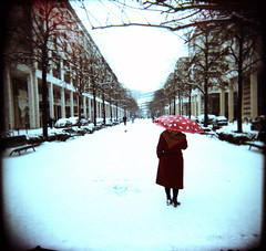 Paris (Etienne Despois) Tags: street winter snow paris square holga xpro hiver neige