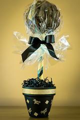 Chocolate Brazil Nut tree (GEHPhotos) Tags: product brazilnuts strobist 430exii canoneos60d canonef100mmf28lmacroisusm yn568ex cholatetree