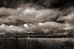 (Pascal Rey Photographies) Tags: paysages paysagesvalledurhne bivrevalloire valloire landscapes landschaft anneyron drmedescollines drme hdr aruba abw