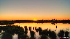 Let's the sun go sleep (Ld\/) Tags: fagnes ardennen ardennes sunset coucher soleil coucherdesoleil belgique belgium belgie beauty rserve nature naturelle waimes eupen july juillet 2016