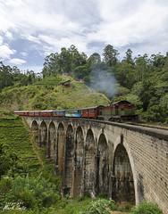 Sri Lanka - Train Hill Country - Nine Arch Bridge (smitsmark@ymail.com) Tags: asia ella ninearchbridge srilanka train