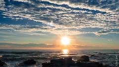 P1140561 (Pursuedbybear) Tags: alexandraheadland sunshinecoast beach sunrise