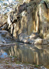 Spring Creek Reflections (BRDR images) Tags: nsw springcreek australianlandscape ourfragileearth wildernessphotography wilderness bushwalking reflections australia
